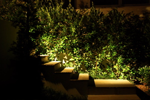 Landscape lighting example 1