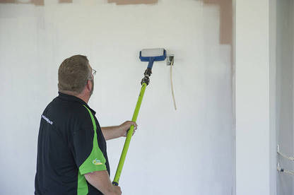 first look renovator paint runner pro consumer nz