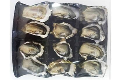 16nov kia ora seafoods shell oysters1