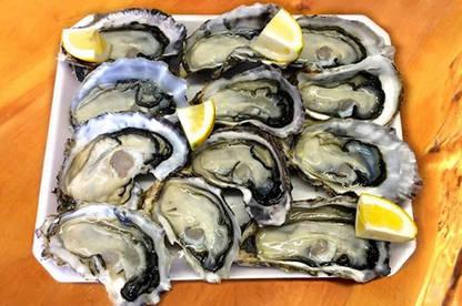 17feb matakana oysters med
