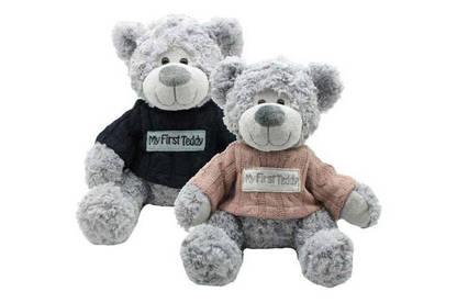 17jun teddytime my first teddy soft toy