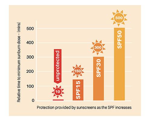 17nov spf graph