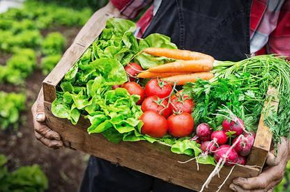 18feb produce