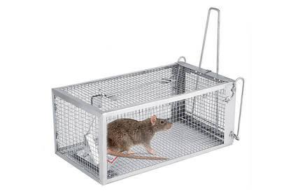 18jul rodent traps live trap