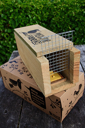 18jul rodent traps predator free portrait