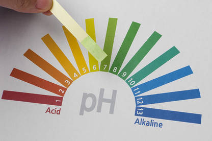 The AlkaJug succeeded in raising the pH level of the tap water we tested.