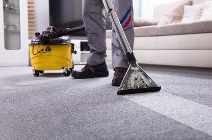 19aug renting rights cleaning carpet