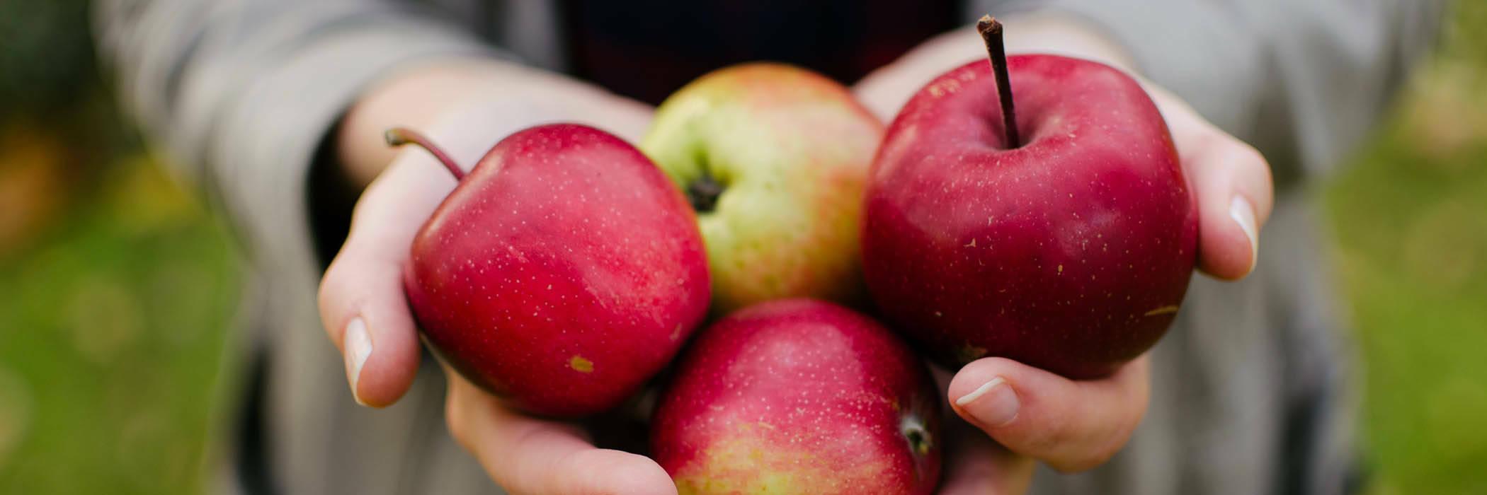 21aug apple cider vinegar hero
