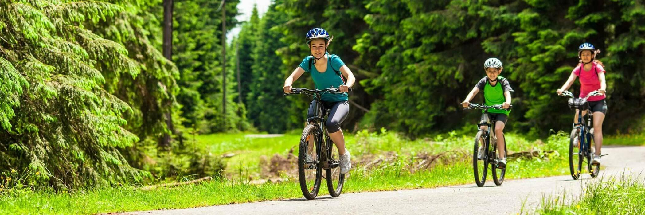 14feb children s bike helments hero