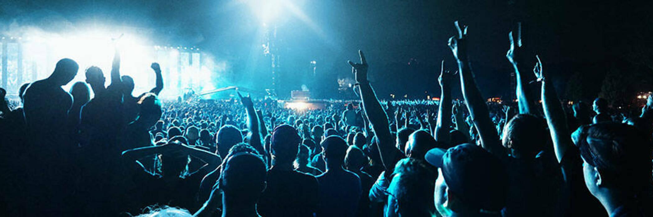 Crowd at a concert at night.