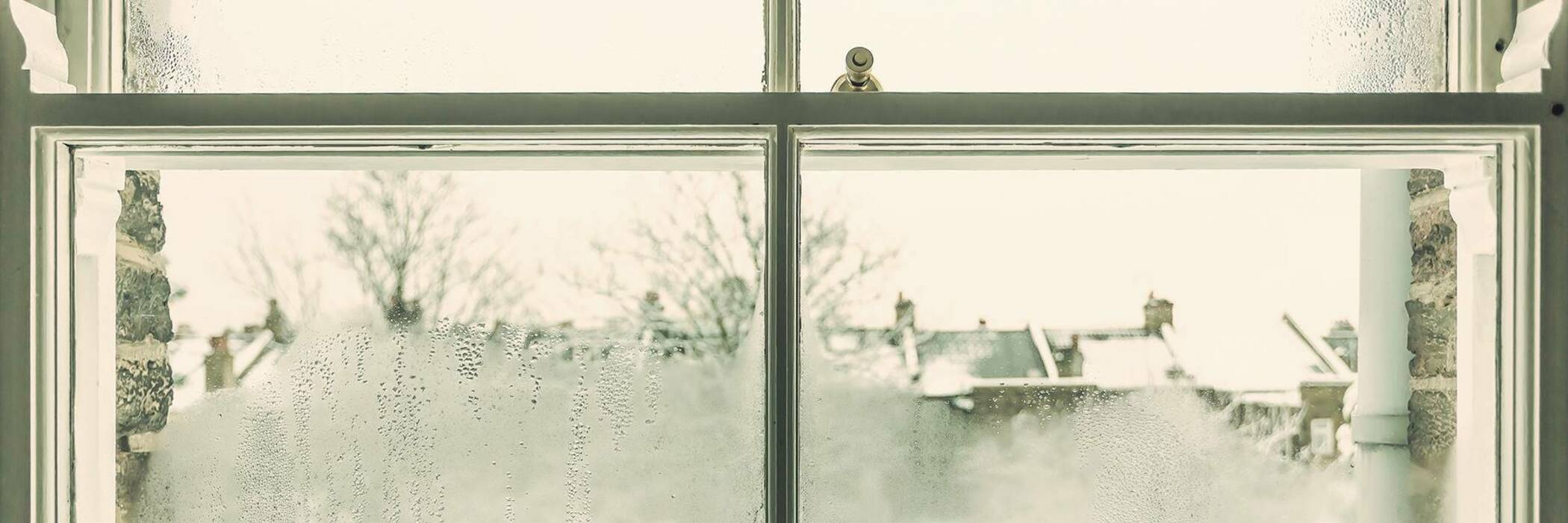 Home maintenance combating dampness herol