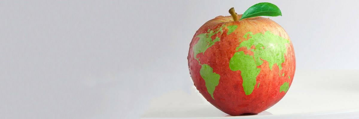 world map on apple