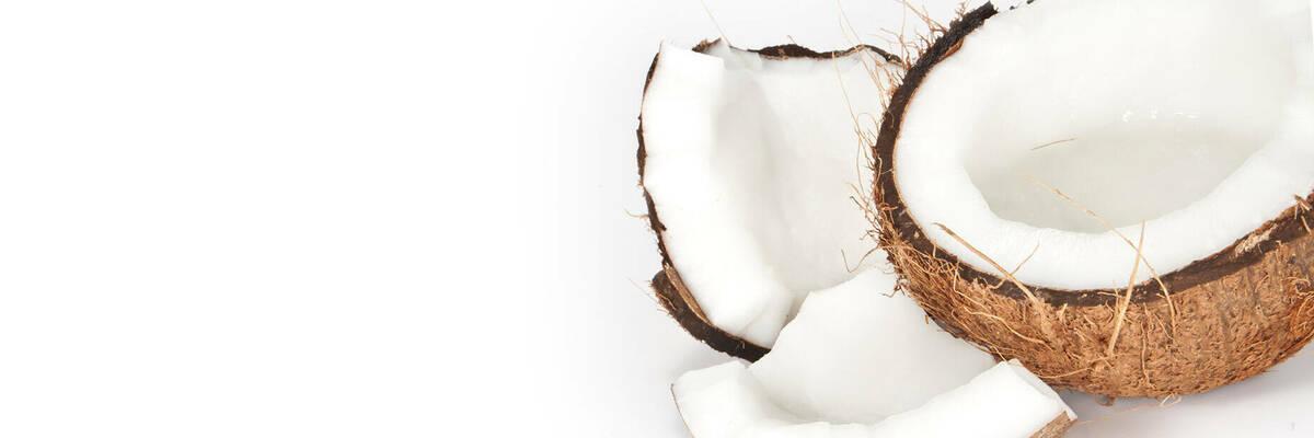 24sept coconutmilk hero