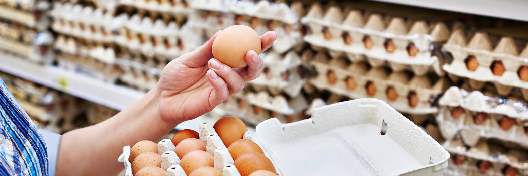 21sep eggs salmonella hero
