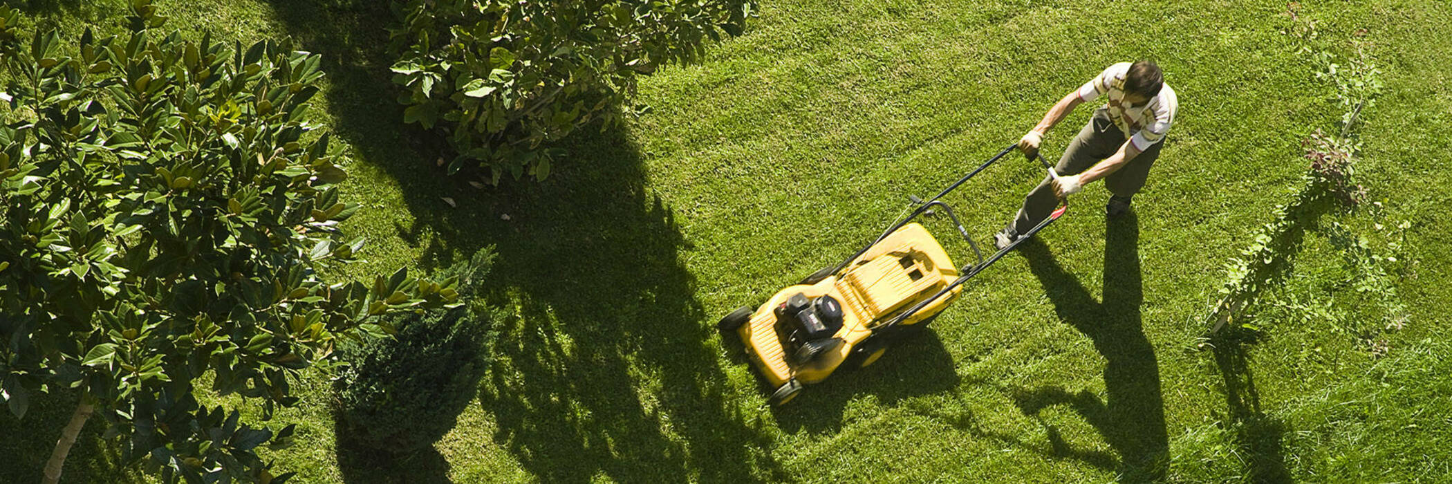 Aerial view of man with yellow lawnmower
