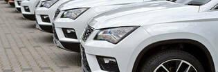 White SUVs in a row