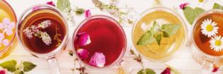 Row of herbal teas containing flowers.