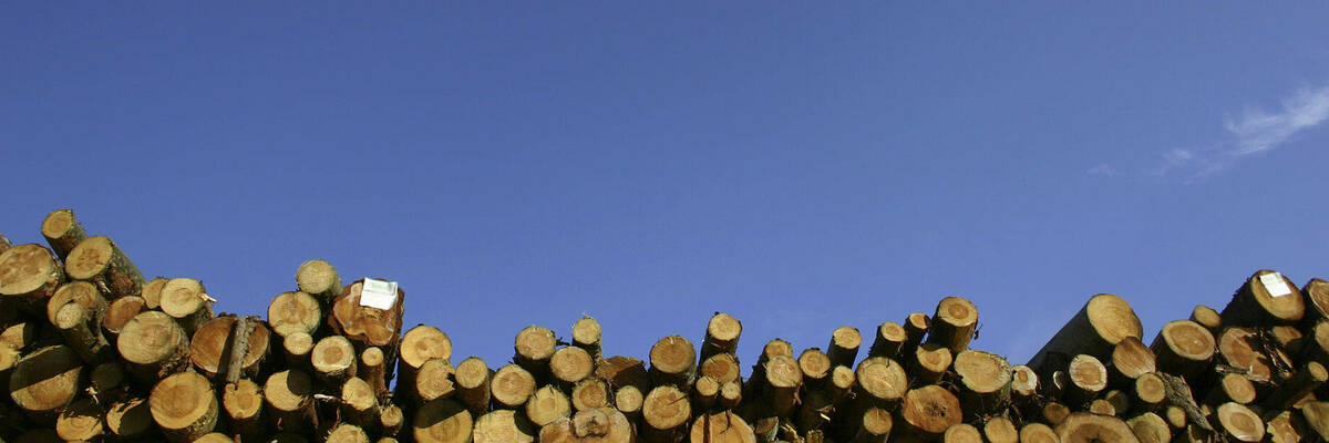 06may2015 low emission woodburners emerge hero