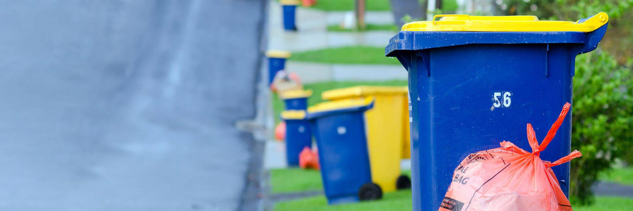Recycling bins put out on Auckland neighbourhood street