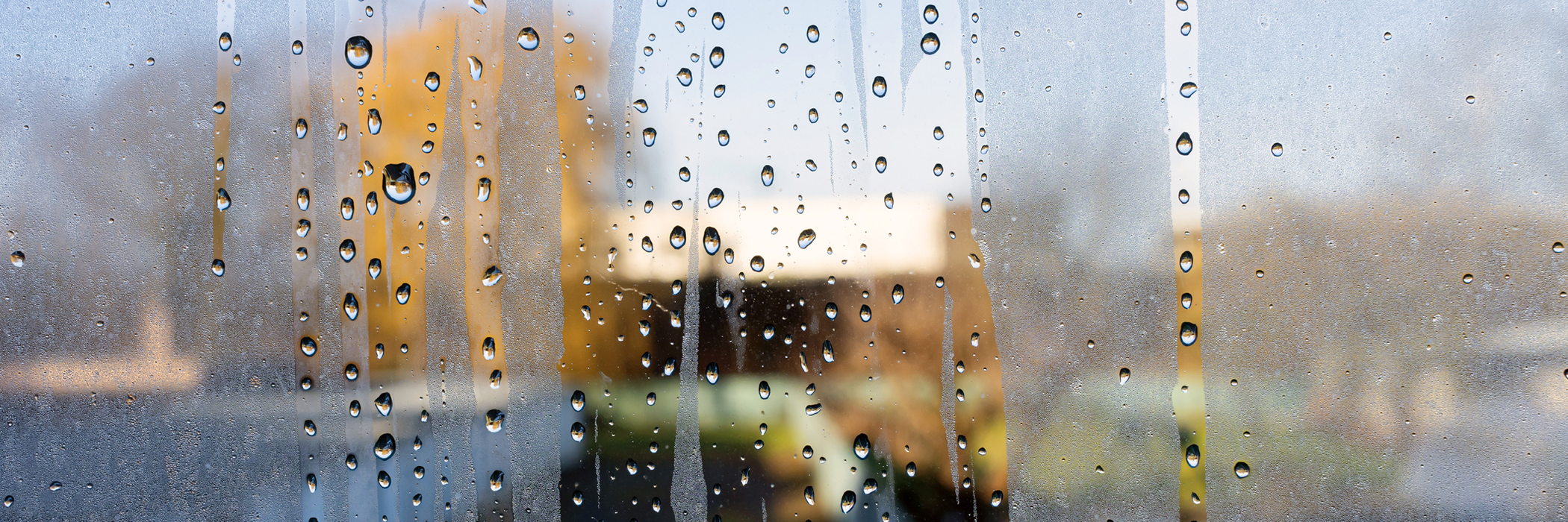 Condensation on a window.