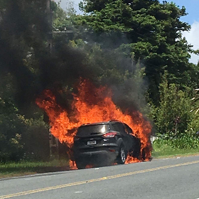Ford Investigating Kuga Fire Consumer Nz