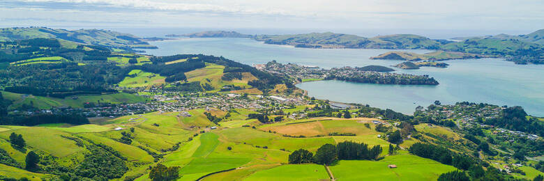 Aerial view of green fields and the sea in New Zealand.