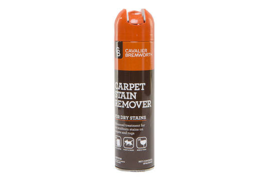 Carpet Stain Remover For Dry Stains