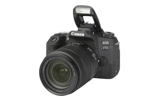 EOS 77D (with 18-135mm lens)