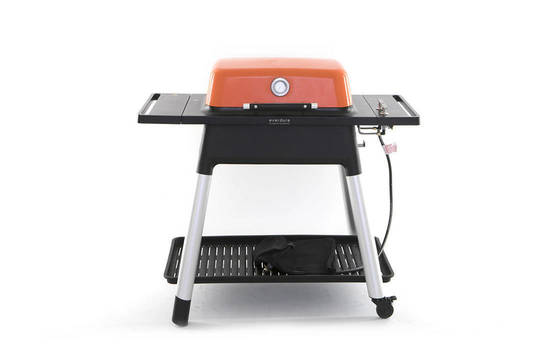 FORCE 2 Burner Gas BBQ with Stand