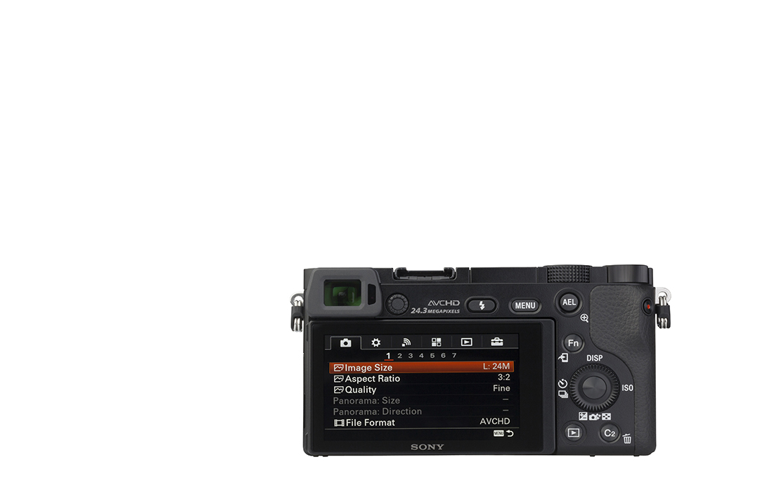 Sony Alpha 6000 (with 16-50 mm lens)